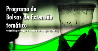 Destaque_Bolsas temáticas aedes