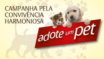 DESTAQUE_Campanha Animais-05