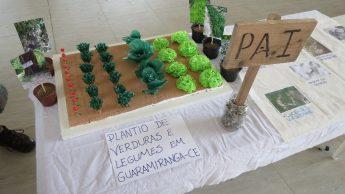 Apresentação dos resultados das práticas agrícolas.